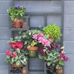 Flower Garden on The Wall